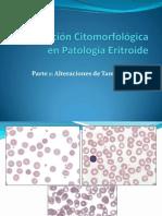 Morfologia de Hematologia