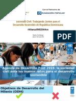 Luciana Mermet, PNUD. Seminario Sociedad Civil, por los 20 años de fundación de Alianza ONG.