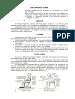 Salud Conciencia Postural