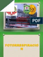 FOTORRESPIRACION (2)