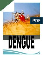 Actualizacion Dengue en America Latina_ Diagnostico y tratamiento de dengue.pdf