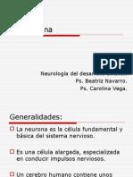 La neurona.ppt