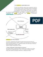 CLASIFICACIÓN  Y DISEÑO  DE LOS SISTEMAS AGROFORESTALES.docx
