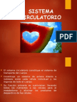 vasossanguineos-100109193846-phpapp02.ppt