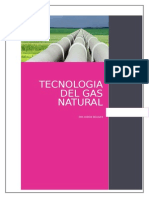 Ta_1703_17510 Tecnologia Del Gas Natural-Desarrollado
