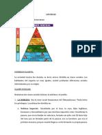 Organización Social de Los Incas y Cañaris