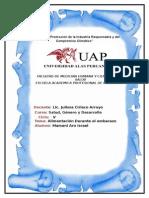 Monografia de Salud Ygenro