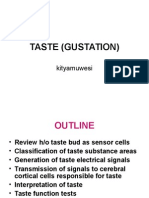 Taste (Gustation)