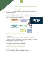 Resumen Farma cardiolab1.docx