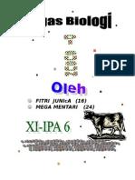 Soal-soal Biologi Kelas 2 Ipa 6