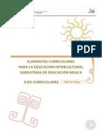 Elementos Curriculares Interculturalidad