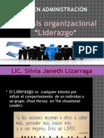 analisis organizacion liderazgo