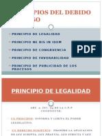 Principios Del Debido Proceso