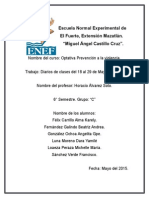 Diarios Del Proyecto Del Cuidado de Sí.