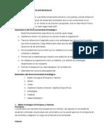 El Direccionamiento Estrategico (1)