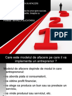 Modele de Reusita in Afaceri Corect 2