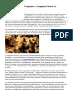 Distintos Tipos De Gorgojos ~ Gorgojos Chinos La Coleoterapia