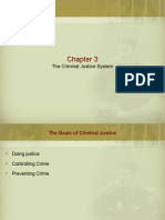 American CJ Chapter 3_The Criminal Justice System BB