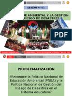 Presentacion1Puno