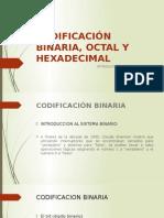 Codificación Binaria, Octal y Hexadecimal