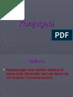 Konjugasi