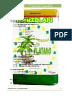 Proyecto de Harina de Platano Vale