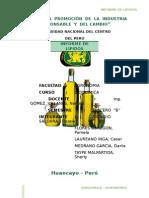 bioquimica-lipidos-INFORME