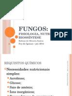 Nutrição dos fungos.pptx