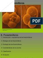 Foraminiferos