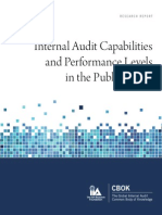 Internal Audit Capabilities and Performance Levels in the Public Sector Research Report