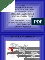 5.1 Competencia-perfecta (1)