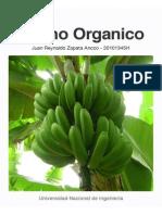 Banano Organico (Piura)