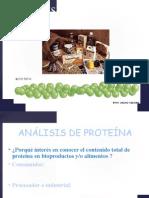 AA-12-Proteina-Icrd.ppt