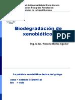 biorremediacin-1195931422936735-5