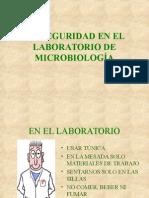 estructuras_morfologia