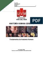 anatomia general.pdf