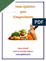 1 Edicao eBook Programa Quantico Para Emagrecimento