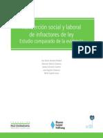 Estudio Comparado de La Evidencia en Reinsercion Social y Laboral