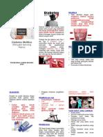 Leaflet Dm Iship