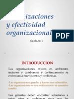 Clase 1 Organizacion y Efetividad