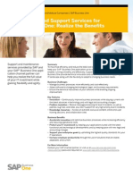 SAP Business One Maintenance
