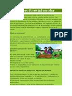 Vivero Forestal Escolar