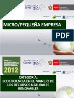 Pro Yec to Eco Guerreros 2012
