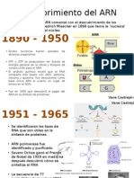 Descubrimiento Del ARN