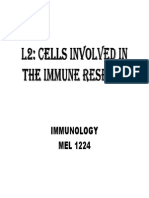 L2 Cells Involved in the Immune Response
