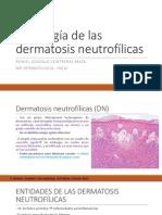 Histología de Las Dermatosis Neutrofílicas