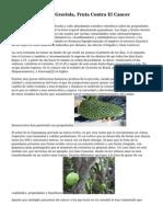 Guanabana O bien Graviola, Fruta Contra El Cancer