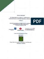 Final Report e i a Executive Summary English