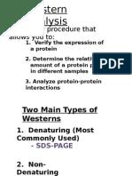MCB 730 Western Blot Presentation 5-2-11 (1)