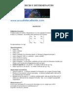 Análisis Matemático - Matrices y Determinantes
